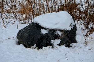 Grey rock w snow