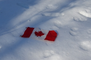 Canadian flag in snow