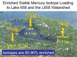 ELA Lake isotopes